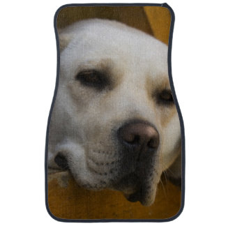 Blond Labrador retriever, Patagonia, Chile Car Mat