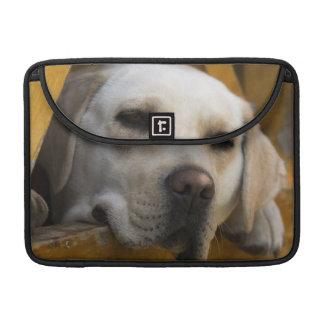 Blond Labrador retriever, Patagonia, Chile MacBook Pro Sleeve