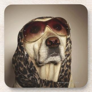 Blond Labrador Retriever wearing sun glasses Coaster