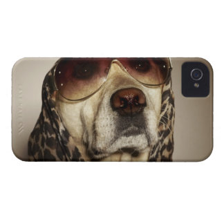 Blond Labrador Retriever wearing sun glasses iPhone 4 Case