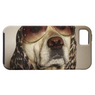 Blond Labrador Retriever wearing sun glasses iPhone 5 Cover