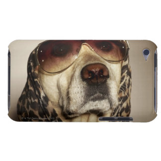 Blond Labrador Retriever wearing sun glasses iPod Touch Cases