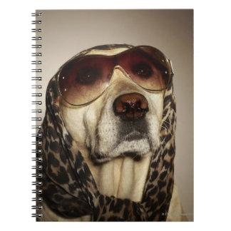 Blond Labrador Retriever wearing sun glasses Notebooks