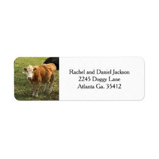 Blonde Cow Address Labels