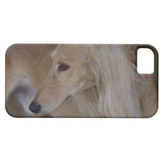 Blonde Saluki Barely There iPhone 5 Case