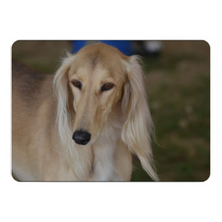 Blonde Saluki Dog 13 Cm X 18 Cm Invitation Card