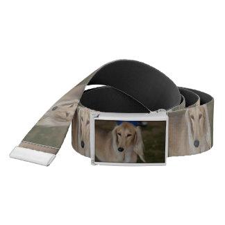 Blonde Saluki Dog Belt
