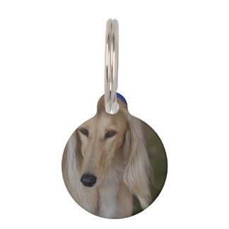 Blonde Saluki Dog Pet Name Tags