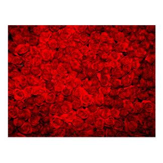 Blood red bed of roses pattern elegant chic postcard