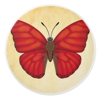 Blood Red Glider Butterfly Ceramic Knob