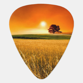 Blood-Red Sunset Guitar Pick