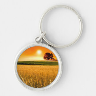 Blood-Red Sunset Silver-Colored Round Key Ring