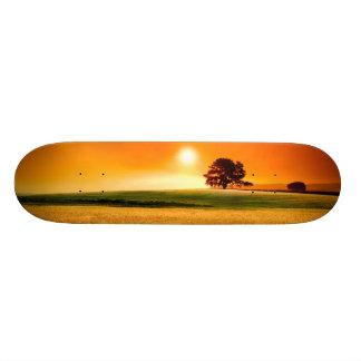 Blood-Red Sunset Skate Boards