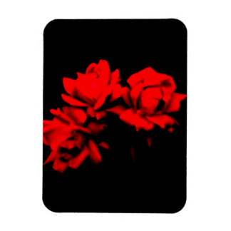 Blood roses in the dark magnet