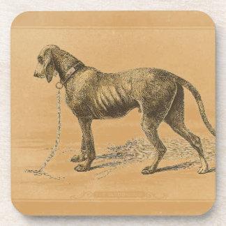 Bloodhound Coaster