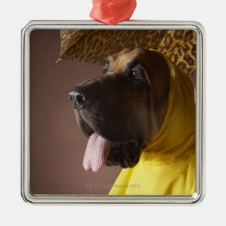 Bloodhound dog. Silver-Colored square decoration