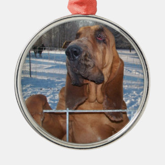 Bloodhound Face Silver-Colored Round Decoration