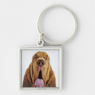 Bloodhound (St. Hubert Hound) with closed eyes, Key Ring