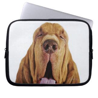 Bloodhound (St. Hubert Hound) with closed eyes, Laptop Sleeve