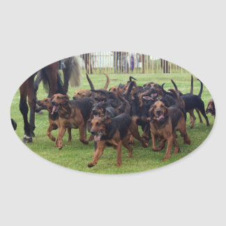 bloodhounds oval sticker