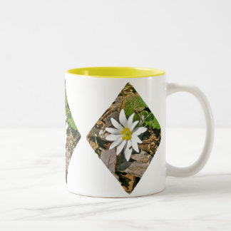 Bloodroot Wildflower Mug Matches an Invitation