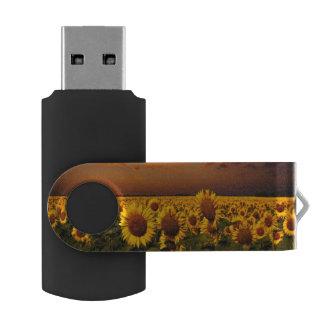 Bloody Skies USB Flash Drive