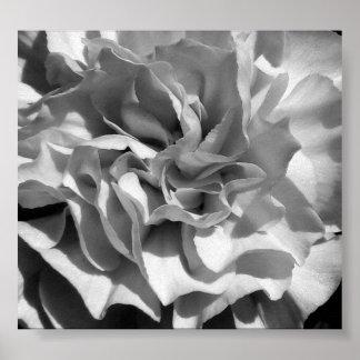 Bloom 4 print