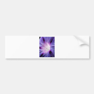 Bloom Flower Bumper Sticker