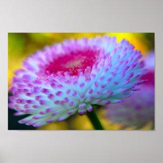 Bloom Flower Posters