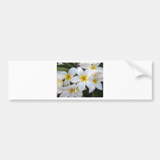 Bloom Flowers Bumper Sticker
