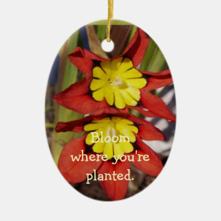 Bloom where you're planted. ceramic oval decoration