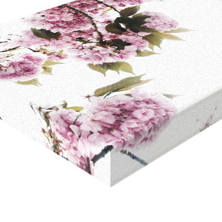 Bloomin Bright Canvas Prints