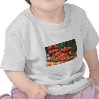 Bloomin' Tulips! Shirts