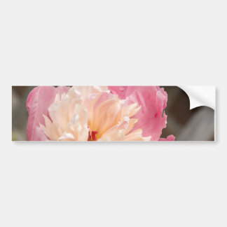 Blooming #2 bumper stickers