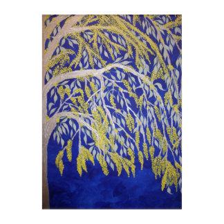 Blooming Australian Wattle on Acrylic Acrylic Print