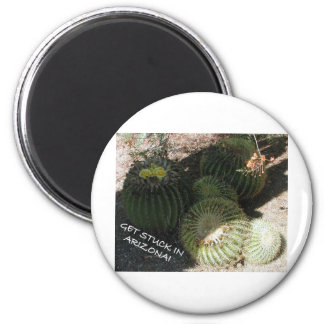 BLOOMING BARREL CACTI AND ASSORTED PHRASES FRIDGE MAGNETS