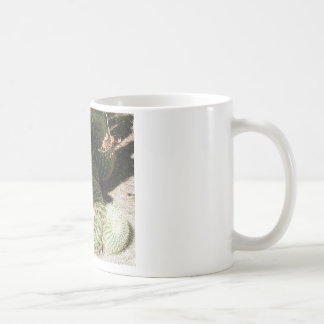 BLOOMING BARREL CACTI AND ASSORTED PHRASES COFFEE MUG