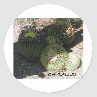BLOOMING BARREL CACTI AND ASSORTED PHRASES STICKER