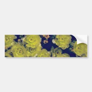 Blooming Beavertail Cactus flowers Bumper Sticker