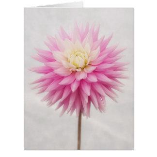 Blooming Big Pink Dahlia Greetings Card