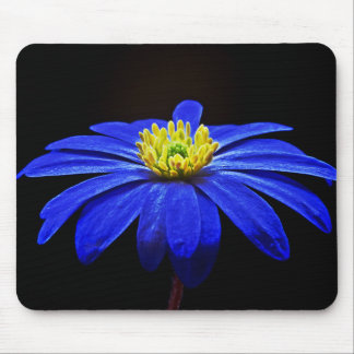 Blooming Blue Flower Mouse Pad