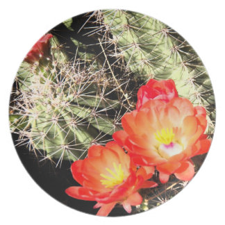 Blooming Cactus at Night Plate