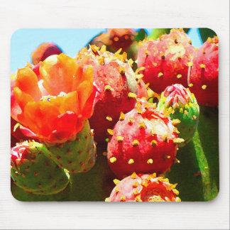 Blooming Cactus by Amy Vangsgard Mouse Mat