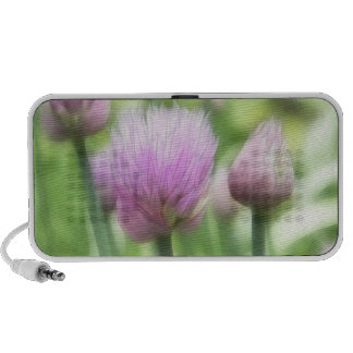 Blooming Chives iPod Speaker