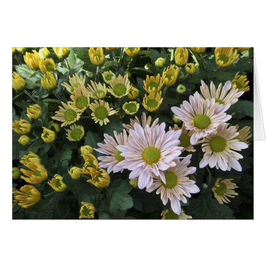 Blooming Chrysanthemums Card