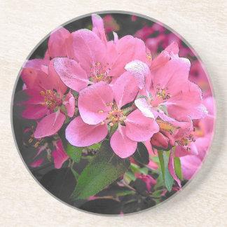 Blooming Crabapple Coaster