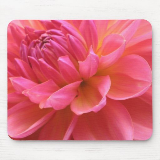 Blooming Dahlia Mousepad