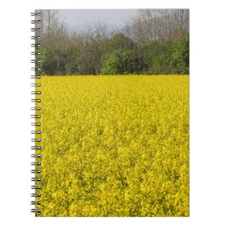 blooming field of rapeseed spiral notebook