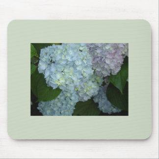 Blooming Hydrangeas mousepad
