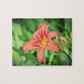 Blooming Late Summer Lily Jigsaw Puzzle